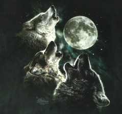 three-wolf-moon-tshirt-logo-hr