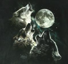 three-wolf-moon-tshirt-logo-hr